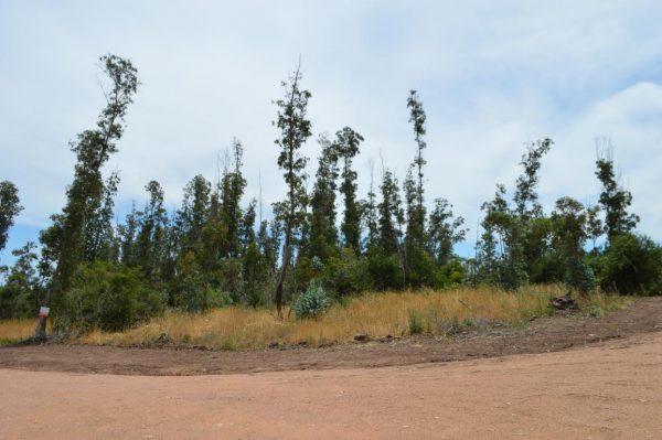 Solar 61 Tamba Punta Colorada