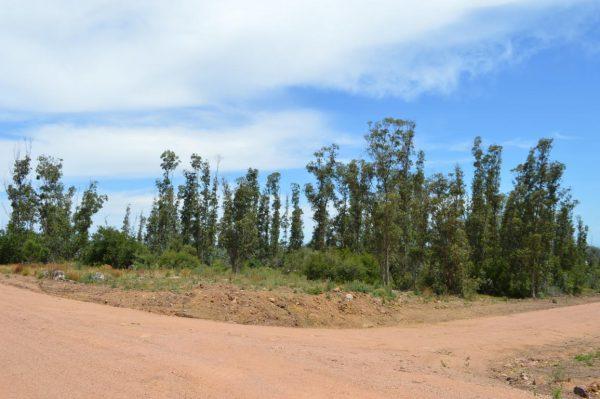 Solar 34 Tamba Punta Colorada