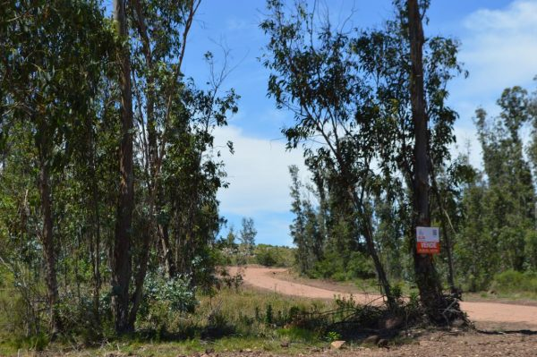 Solar 60 Tamba Punta Colorada Piriapolis