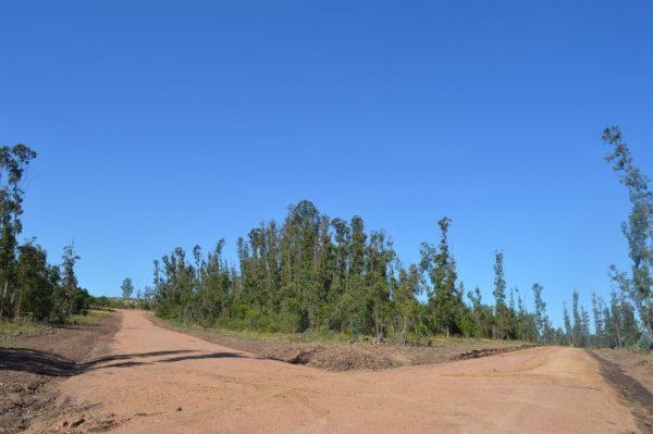 Solar 7 Tamba Terrenos en Punta Colorada