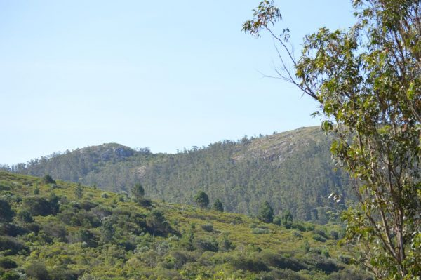 Solar 8 Tamba Terrenos en Piriapolis Punta Colorada