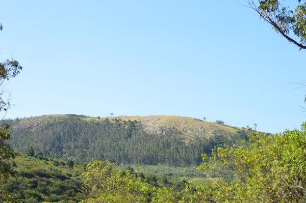 Solar 33 Tamba Terrenos en Punta Colorada